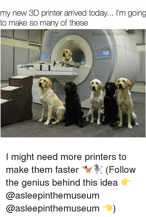 3d printers: my new 3D printer arrived today... l'm going  to make so many of these  @asleepinthemuseum I might need more printers to make them faster 🐕🐩 (Follow the genius behind this idea 👉@asleepinthemuseum @asleepinthemuseum 👈)