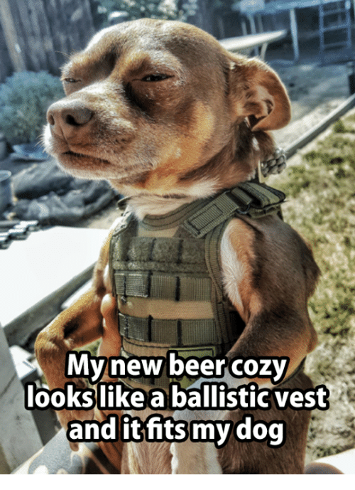 ballistics: My new beer cozy  looks like a ballistic vest  and it fits my dog