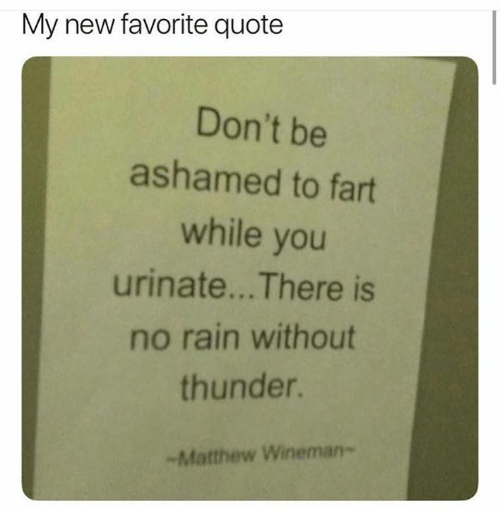 no rain: My new favorite quote  Don't be  ashamed to fart  while you  urinate... There is  no rain without  thunder.