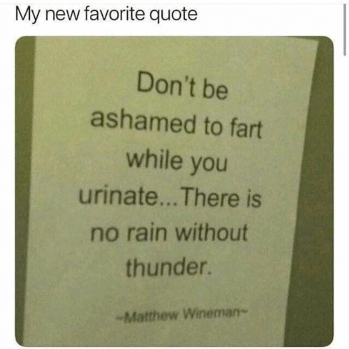 no rain: My new favorite quote  Don't be  ashamed to fart  while you  urinate... There is  no rain without  thunder.  -Matthew Wineman-