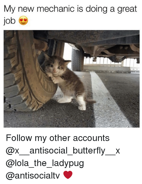 Memes, Butterfly, and Mechanic: My new mechanic is doing a great  job Follow my other accounts @x__antisocial_butterfly__x @lola_the_ladypug @antisocialtv ❤️