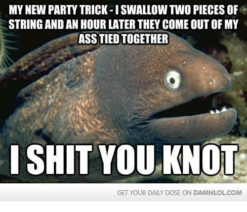 I Shit You Knot: MY NEW PARTY TRICK-I SWALLOW TWO PIECESOF  STRING AND AN HOUR LATER THEY COME OUT OF MY  ASSTIEDTOGETHER  I SHIT YOU KNOT  GET YOUR DAILY DOSE ON DAMNLOLCOM