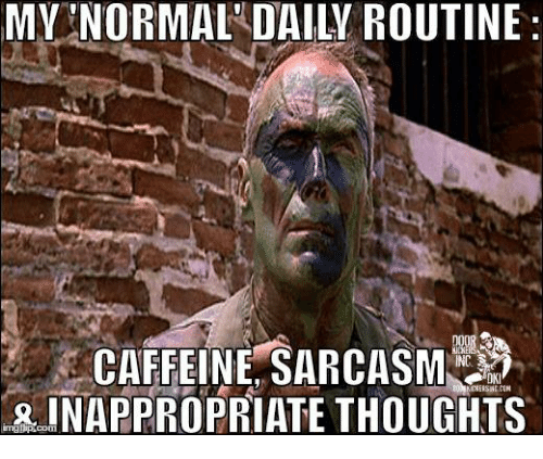 Memes, Sarcasm, and 🤖: MY NORMAL DAILY ROUTINE:  CAFFEINE SARCASM  INAPPROPRIATE THOUGHTS