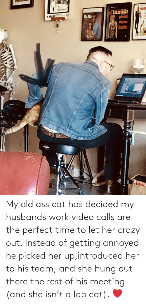 husbands: My old ass cat has decided my husbands work video calls are the perfect time to let her crazy out. Instead of getting annoyed he picked her up,introduced her to his team, and she hung out there the rest of his meeting (and she isn't a lap cat). ❤️
