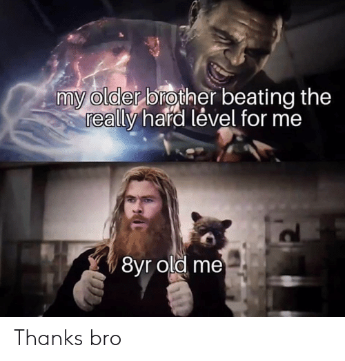 Older Brother: my older brother beating the  really hard lével for me  8yr old me Thanks bro