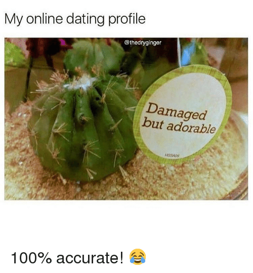 Online dating: My online dating profile  @thedryginger  Damaged  but adorable 100% accurate! 😂