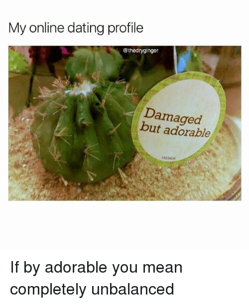 Dating, Memes, and Online Dating: My online dating profile  @thedryginger  Damaged  but adorable If by adorable you mean completely unbalanced
