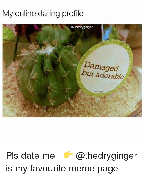 Dating, Meme, and Memes: My online dating profile  @thedryginger  Damaged  but adorable Pls date me | 👉 @thedryginger is my favourite meme page