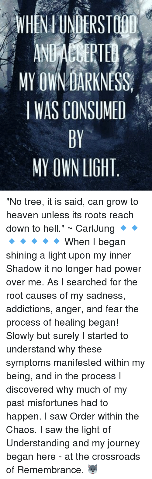 """Misfortunately: MY OWNDARKNESS,  I WAS CONSUMED  MY OWN LIGHT """"No tree, it is said, can grow to heaven unless its roots reach down to hell."""" ~ CarlJung 🔹🔹🔹🔹🔹🔹🔹 When I began shining a light upon my inner Shadow it no longer had power over me. As I searched for the root causes of my sadness, addictions, anger, and fear the process of healing began! Slowly but surely I started to understand why these symptoms manifested within my being, and in the process I discovered why much of my past misfortunes had to happen. I saw Order within the Chaos. I saw the light of Understanding and my journey began here - at the crossroads of Remembrance. 🐺"""
