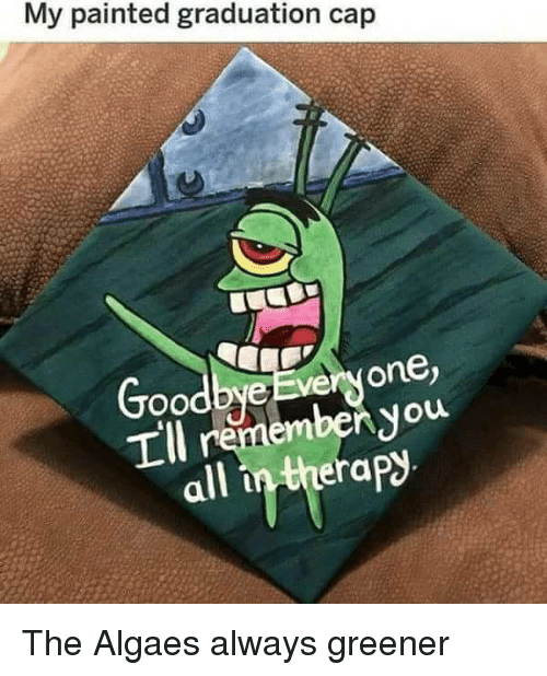 graduation cap: My painted graduation cap  Goodbye Everyone,  Tll remembenyou  all in therap The Algaes always greener
