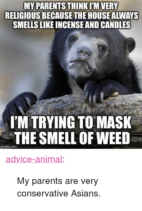 """Advice, Parents, and Smell: MY PARENTS THINKI'M VERY  RELIGIOUS BECAUSE THE HOUSE ALWAYS  SMELLS LIKE INCENSE AND CANDLES  I'M TRYING TO MASK  THE SMELL OF WEED  imgflip.com <p><a href=""""http://advice-animal.tumblr.com/post/169230013902/my-parents-are-very-conservative-asians"""" class=""""tumblr_blog"""">advice-animal</a>:</p>  <blockquote><p>My parents are very conservative Asians.</p></blockquote>"""