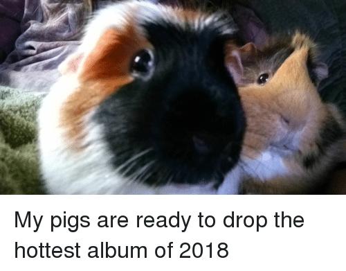 Reese's: My pigs are ready to drop the hottest album of 2018