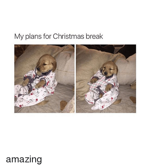 Christmas Break