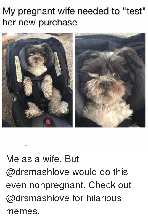 "Memes, Pregnant, and Test: My pregnant wife needed to ""test""  her new purchase Me as a wife. But @drsmashlove would do this even nonpregnant. Check out @drsmashlove for hilarious memes."