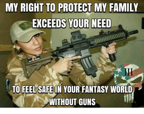 Family, Guns, and Memes: MY RIGHT TO PROTECT MY FAMILY  EXCEEDS YOUR NEED  TO FEEL SAFE IN YOUR FANTASY WORLD  WITHOUT GUNS