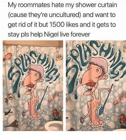 Memes, Shower, and Forever: My roommates hate my shower curtain  (cause they're uncultured) and want to  get rid of it but 1500 likes and it gets to  stay pls help Nigel live forever  0  10