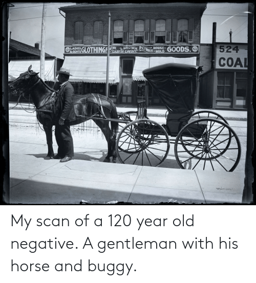Scan: My scan of a 120 year old negative. A gentleman with his horse and buggy.