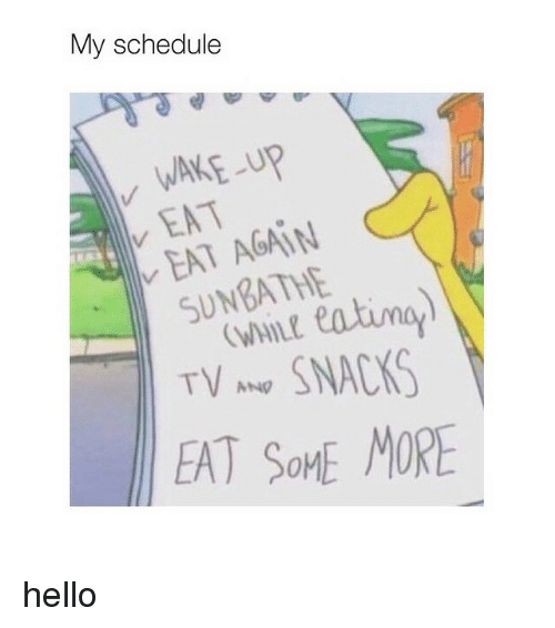 wane: My schedule  WANE-up  EAT  AGAIN  SUNBATHE  TV ANg  SNACAS  EAT SOME MORE hello