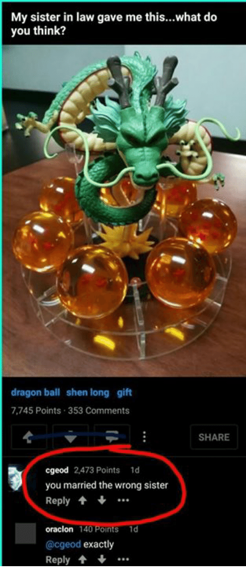 Funny, Dragon Ball, and Shen: My sister in law gave me this...what do  you think?  dragon ball shen long gift  7,745 Points 353 Comments  SHARE  cgeod 2,473 Points 1d  you married the wrong sister  Reply ..  oraclon 140 Points 1d  @cgeod exactly  Reply