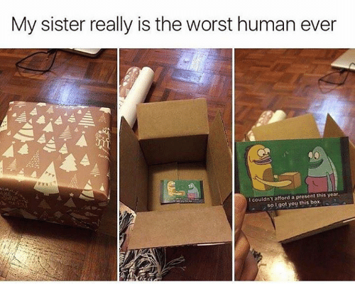 ˜†: My sister really is the worst human ever  couldn't afford a present this year.  so got you this box