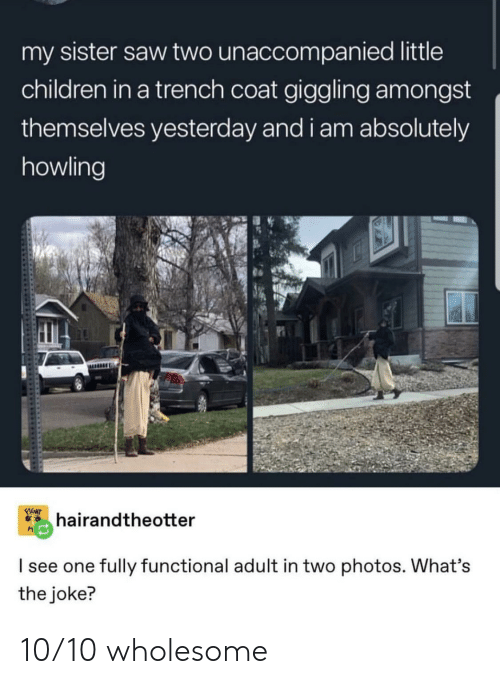 howling: my sister saw two unaccompanied little  children in a trench coat giggling amongst  themselves yesterday and i am absolutely  howling  FIGHT  hairandtheotter  I see one fully functional adult in two photos. What's  the joke? 10/10 wholesome