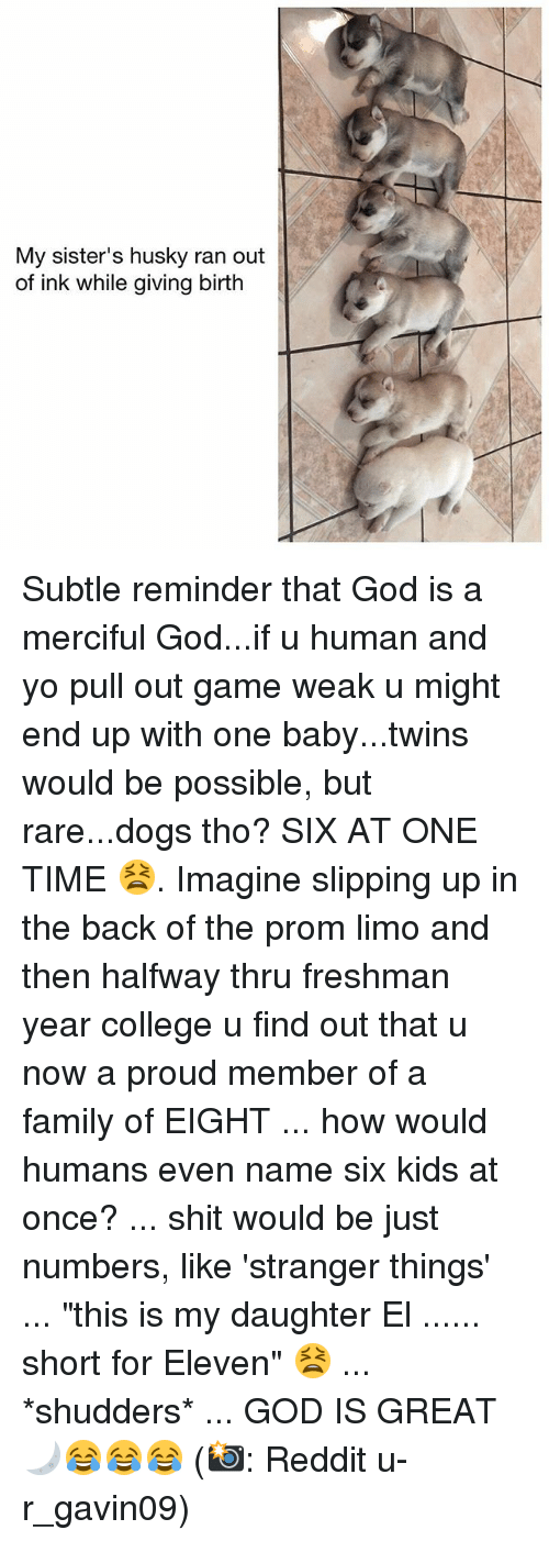 """College, Dogs, and Family: My sister's husky ran out  of ink while giving birth Subtle reminder that God is a merciful God...if u human and yo pull out game weak u might end up with one baby...twins would be possible, but rare...dogs tho? SIX AT ONE TIME 😫. Imagine slipping up in the back of the prom limo and then halfway thru freshman year college u find out that u now a proud member of a family of EIGHT ... how would humans even name six kids at once? ... shit would be just numbers, like 'stranger things' ... """"this is my daughter El ...... short for Eleven"""" 😫 ... *shudders* ... GOD IS GREAT 🌙😂😂😂 (📸: Reddit u-r_gavin09)"""