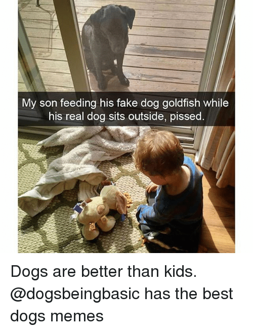 Dogs, Fake, and Funny: My son feeding his fake dog goldfish while  his real dog sits outside, pissed Dogs are better than kids. @dogsbeingbasic has the best dogs memes