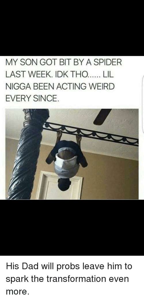 Blackpeopletwitter, Dad, and Funny: MY SON GOT BIT BY A SPIDER  LAST WEEK. IDK THO...LIL  NIGGA BEEN ACTING WEIRD  EVERY SINCE.