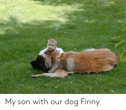 Finny: My son with our dog Finny
