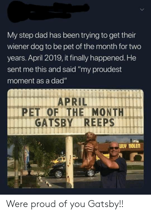 """gatsby: My step dad has been trying to get their  wiener dog to be pet of the month for two  years. April 2019, it finally happened. He  sent me this and said """"my proudest  moment as a dad""""  PET OF THE MONTH  GATSBY REEPS Were proud of you Gatsby!!"""