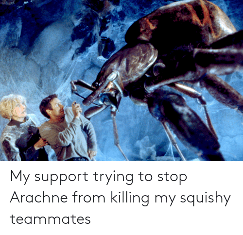 My Squishy: My support trying to stop Arachne from killing my squishy teammates