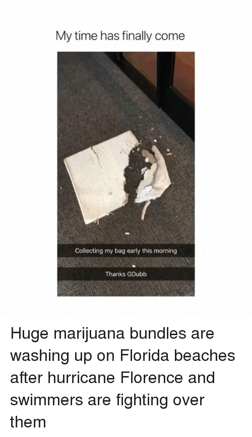 florence: My time has finally come  Collecting my bag early this morning  Thanks GDubb Huge marijuana bundles are washing up on Florida beaches after hurricane Florence and swimmers are fighting over them