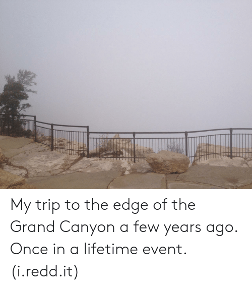 the grand canyon: My trip to the edge of the Grand Canyon a few years ago. Once in a lifetime event. (i.redd.it)