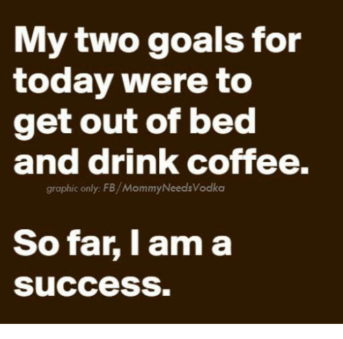 getting out of bed: My two goals for  today were to  get out of bed  and drink coffee.  graphic only: FB/MommyNeeds Vodka  So far, I am a  success