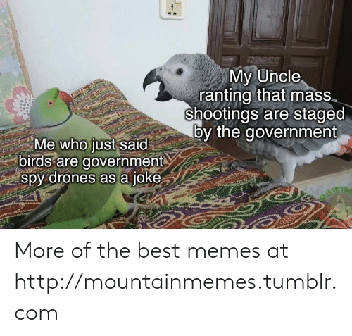 Drones: My Uncle  ranting that mass  shootings are staged  by the government  Me who just said  birds are government  spy drones as a joke More of the best memes at http://mountainmemes.tumblr.com