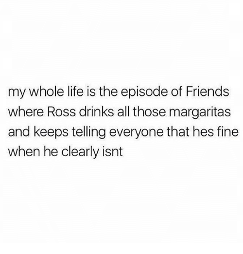 Friends, Life, and Memes: my whole life is the episode of Friends  where Ross drinks all those margaritas  and keeps telling everyone that hes fine  when he clearly isnt