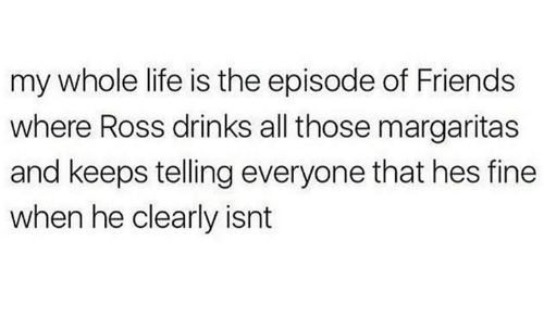 Friends, Life, and Ross: my whole life is the episode of Friends  where Ross drinks all those margaritas  and keeps tellingeveryone that hes fine  when he clearly isnt