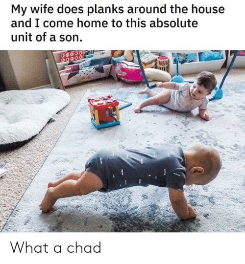 come-home: My wife does planks around the house  and I come home to this absolute  unit of a son  opep What a chad
