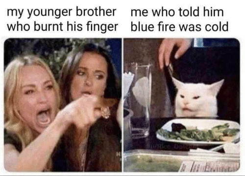 burnt: my younger brother  who burnt his finger  me who told him  blue fire was cold