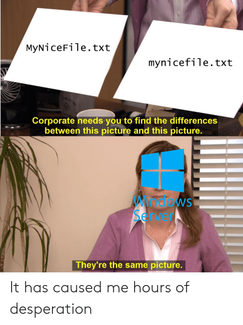 Desperation: MyNiceFile.txt  mynicefile.txt  Corporate needs you to find the differences  between this picture and this picture  Windows  Server  They're the same picture It has caused me hours of desperation