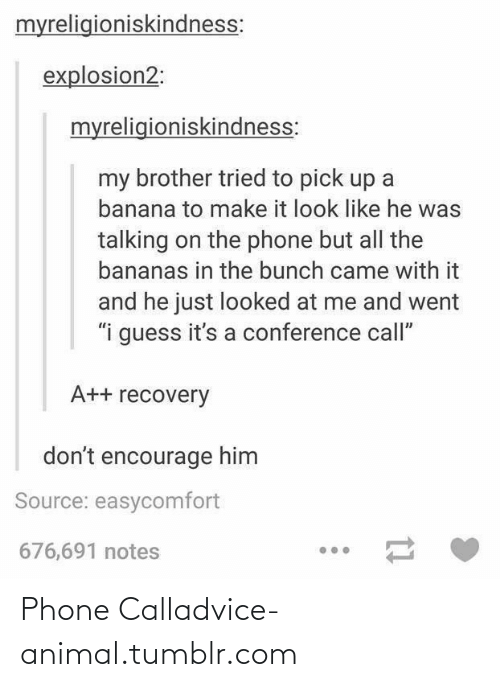 "Phone: myreligioniskindness:  explosion2:  myreligioniskindness:  my brother tried to pick up a  banana to make it look like he was  talking on the phone but all the  bananas in the bunch came with it  and he just looked at me and went  ""i guess it's a conference call""  A++ recovery  don't encourage him  Source: easycomfort  676,691 notes Phone Calladvice-animal.tumblr.com"