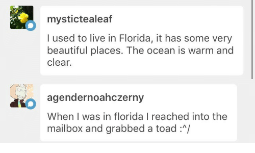 beautiful places: mystictealeaf  I used to live in Florida, it has some very  beautiful places. The ocean is warm and  clear.   agendernoahczerny  When I was in florida I reached into the  mailbox and grabbed a toad :/