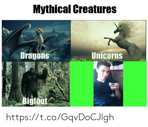 Bigfoot: Mythical Creatures  Unicorns  Dragons  Bigfoot https://t.co/GqvDoCJlgh