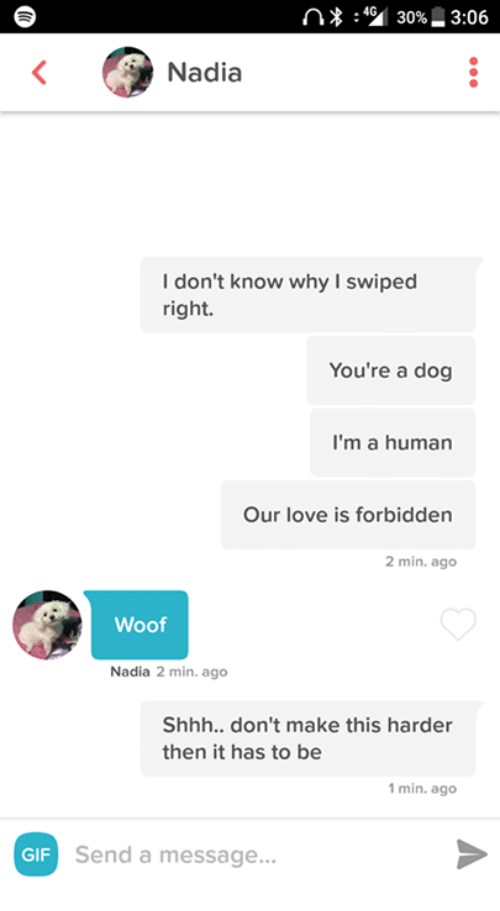 Dank, Gif, and Gifs: n 30%43:06  Nadia  I don't know why swiped  right.  You're a dog  I'm a human  Our love is forbidden  2 min. ago  Woof  Nadia 2 min. ago  Shhh.. don't make this harder  then it has to be  1 min. ago  GIF Send a message