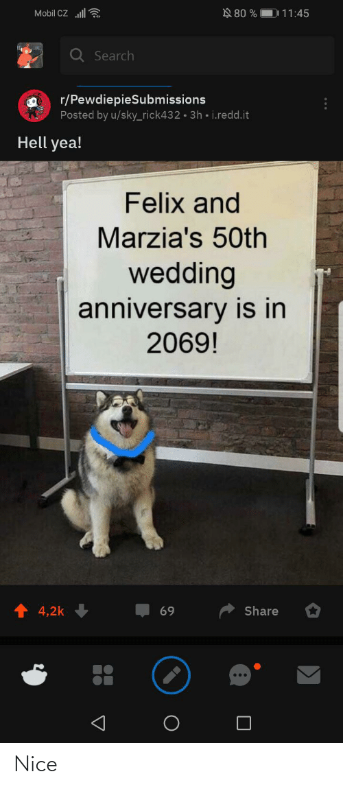 wedding anniversary: N 80 %    Mobil CZ ll  D 11:45  Q Search  r/PewdiepieSubmissions  Posted by u/sky_rick432 · 3h • i.redd.it  Hell yea!  Felix and  Marzia's 50th  wedding  anniversary is in  2069!  4,2k  Share  69  ... Nice
