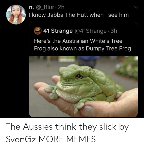 frog: n. @_fflur 2h  I know Jabba The Hutt when I see him  41 Strange @41Strange 3h  Here's the Australian White's Tree  Frog also known as Dumpy Tree Frog The Aussies think they slick by SvenGz MORE MEMES