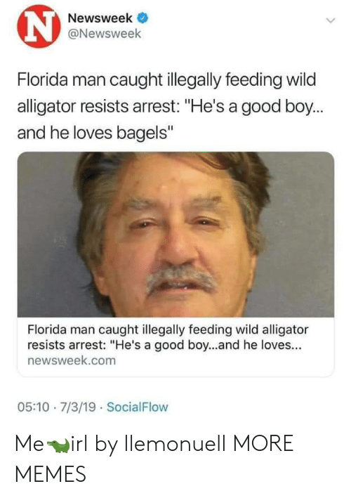 """10 7: N  Newsweek  @Newsweek  Florida man caught illegally feeding wild  alligator resists arrest: """"He's a good boy...  and he loves bagels""""  Florida man caught illegally feeding wild alligator  resists arrest: """"He's a good boy...and he loves...  newsweek.com  05:10 7/3/19 SocialFlow Me🐊irl by llemonuell MORE MEMES"""