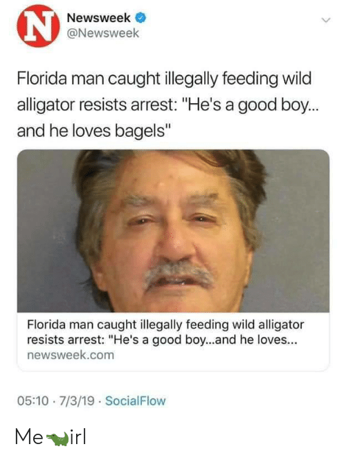 """Bagels: N  Newsweek  @Newsweek  Florida man caught illegally feeding wild  alligator resists arrest: """"He's a good boy...  and he loves bagels""""  Florida man caught illegally feeding wild alligator  resists arrest: """"He's a good boy...and he loves...  newsweek.com  05:10 7/3/19 SocialFlow Me🐊irl"""