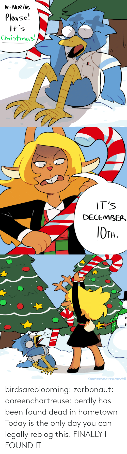 Hometown: N-Noelle,  Please!  I+s  Christmas   IT'S  DECEMBEP  TH.   DOREENCHARTREUSE birdsareblooming:  zorbonaut:  doreenchartreuse: berdly has been found dead in hometown Today is the only day you can legally reblog this.  FINALLY I FOUND IT