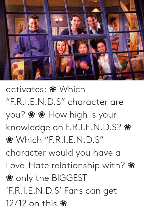 "zodiac sign: NA activates:    ❀ Which ""F.R.I.E.N.D.S"" character are you? ❀   ❀ How high is your knowledge on   F.R.I.E.N.D.S? ❀       ❀  ​Which ""F.R.I.E.N.D.S"" character would you have a Love-Hate relationship with?   ❀        ❀  only the BIGGEST 'F.R.I.E.N.D.S' Fans can get 12/12 on this   ❀"